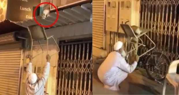 Elderly man earns applaud for Rescuing a Cat using chair to get Down, Watch Video