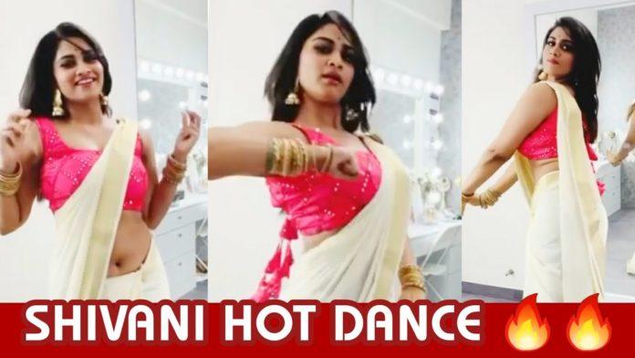 Shivani Narayanan Onam Dance Video